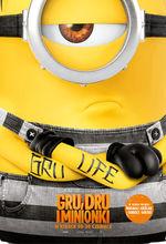Plakat filmu Gru, Dru i Minionki
